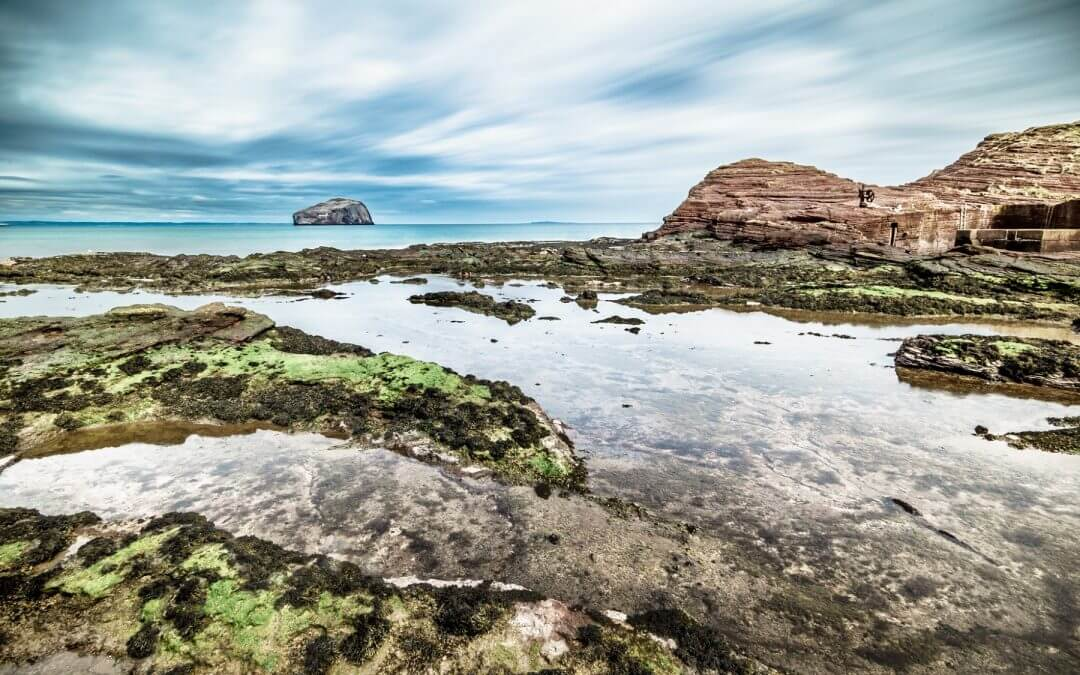Trips from Edinburgh: North Berwick