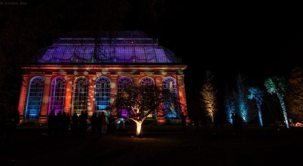This Month: Edinburgh's Botanic Lights